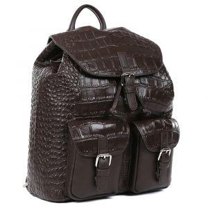 Рюкзак мужской Fabretti CSN3547-brown